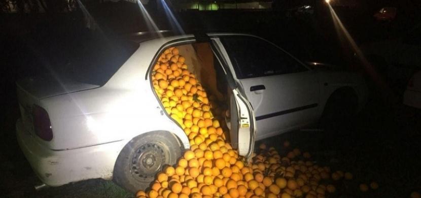 Policie odstavila při kontrole tři vozy. Uvnitř nalezla něco naprosto nepochopitelného